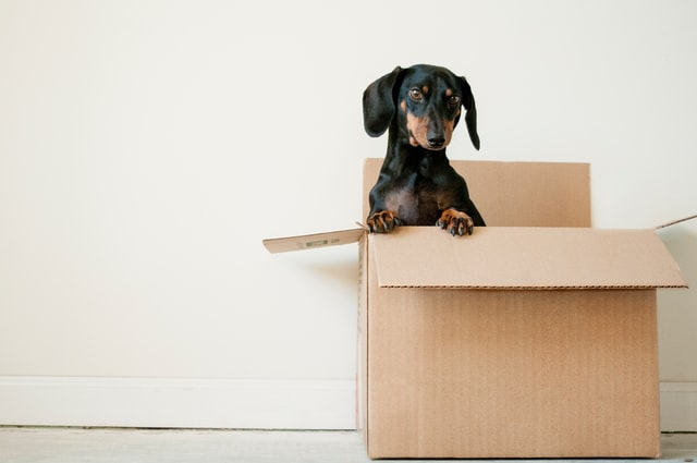 3 Tips for Making the Moving Process Easier